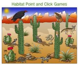 Animals of the Desert Bulletin Board Inspiration | Desert ...