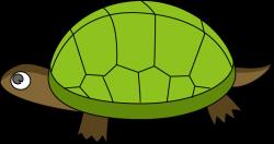 The Top 5 Best Blogs on Tortoise Shell Clip Art