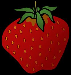 Strawberry | Free Stock Photo | Illustration of a strawberry | # 15374