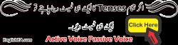 Active Passive Urdu Lesson Present Indefinite Test PDF   EA English