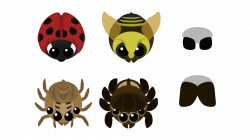 Laybug, Bee, House Spider and Jumping Spider : mopeio