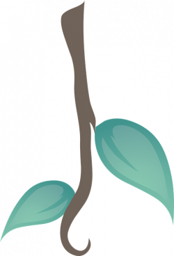 19 Plants clipart HUGE FREEBIE! Download for PowerPoint ...