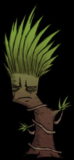 Tree/Regular Jungle Tree | Don't Starve game Wiki | FANDOM powered ...