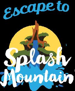 Disney birthday – Escape To Splash Mountain