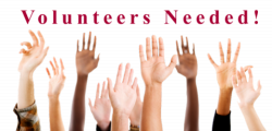 Volunteers Needed to Represent a Diversity of Immigrant Voices in ...