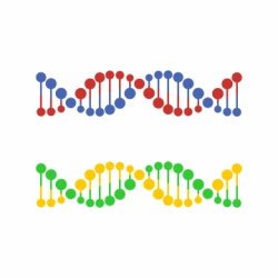 Dna Png, Vector, PSD, and Clipart With Transparent ...