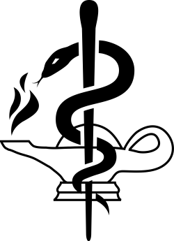 File:Nursing symbol and WHO rod.svg - Wikimedia Commons