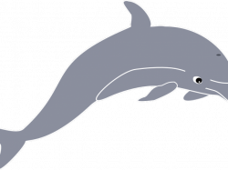 Dolphin Clipart - Free Clipart on Dumielauxepices.net