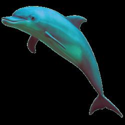dolphin vaporwave - Sticker by Brandón Arellano