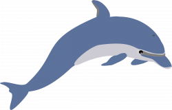 Dolphins clipart reading - Pencil and in color dolphins clipart reading