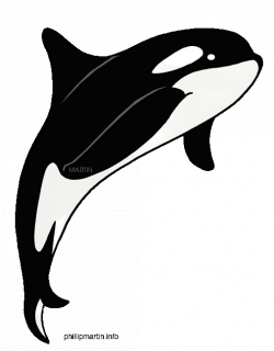black and white whale clipart - Clipground
