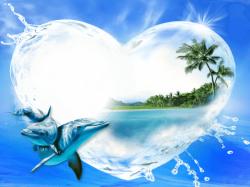 dolphins clipart frame #719 | photos | Dolphin photos ...