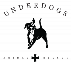 Petstablished | Underdogs Animal Rescue has pets for adopt.