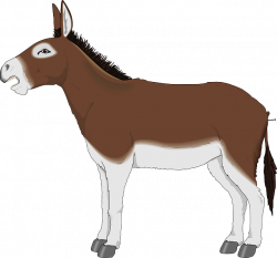 Donkey PNG