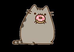 cat kawaii pusheen donuts
