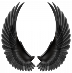 Peace clipart wing - Pencil and in color peace clipart wing
