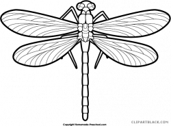 Black and white dragonfly clipart clipart images gallery for ...