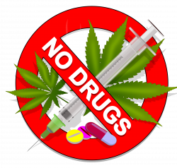 28+ Collection of No Drugs Clipart | High quality, free cliparts ...