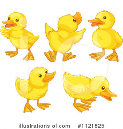 Clipart Of Duck Cute Duck Clip Art Duckling Clipart Royalty Free Rf ...