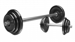 28+ Collection of Weights Clipart Transparent | High quality, free ...