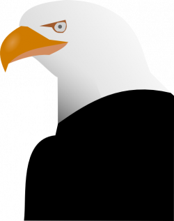 Eagle Clipart | i2Clipart - Royalty Free Public Domain Clipart