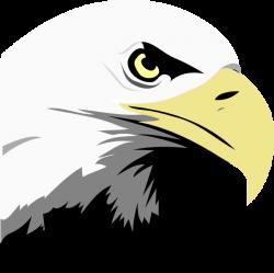 Eagle Clip Art at Clker.com - vector clip art online, royalty free ...