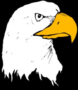 Eagle 22 Clip Art at Clker.com - vector clip art online, royalty ...