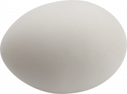 Egg Three | Isolated Stock Photo by noBACKS.com