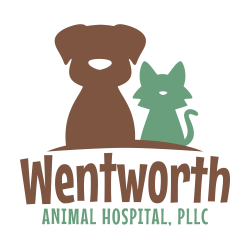 Wentworth Animal Hospital | Vet Services | Grooming | Boarding