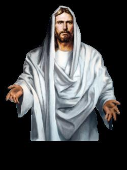 Jesus-Christ-PNG-Clipart.png (1600×2132) | PNG | Pinterest