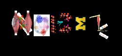 Nano-Omic-Bio-Engineering-Lab – Home of the Nano-Omic-Bio ...