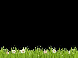 Grass Transparent Background. Grass Transparent Background F - Churl.co