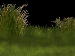 Plant Wetland Landscape Clip art - Field background pattern 800*600 ...