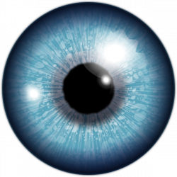 Blue Eye Clip Art at Clker.com - vector clip art online, royalty ...