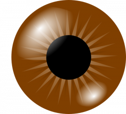 Brown Eye Clip Art at Clker.com - vector clip art online, royalty ...