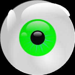 Eyeball Green Clip Art at Clker.com - vector clip art online ...