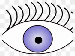 Eye Clipart Sense - Sense Of Sight Png Transparent Png ...