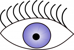 Clipart Of Vision, Eye The And Sense Sight View - Clipart ...