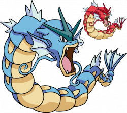 Why does Gyarados look so mad? - Quora