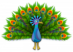 Best 50+ Peacock Clipart Images Free Download 【2018】