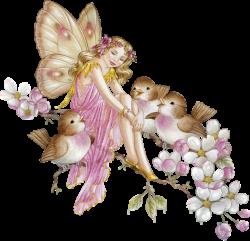 ShirleyBarber_Fairies | Pinterest | Fairy, Bird and Songs