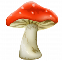 28+ Collection of Mushroom Clipart Transparent | High quality, free ...