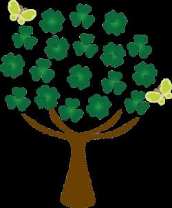 Clipart#клипарт#wood#елка#дерево | Елочки#клипарт#clipart#деревья ...