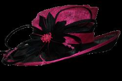 fancy_pink_hat_by_doloresmd-d72vmzt.png (1024×680) | Hats ...