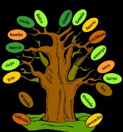 Árbol de Adjetivos (tree of adjectives) a great freebie for ...