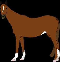Staring Horse Clip Art at Clker.com - vector clip art online ...