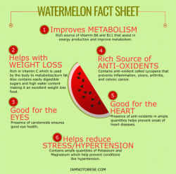 Is Watermelon Fattening? – IamNotObese
