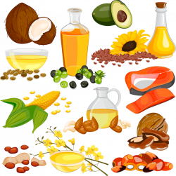 19 Nut clipart oil seed HUGE FREEBIE! Download for PowerPoint ...
