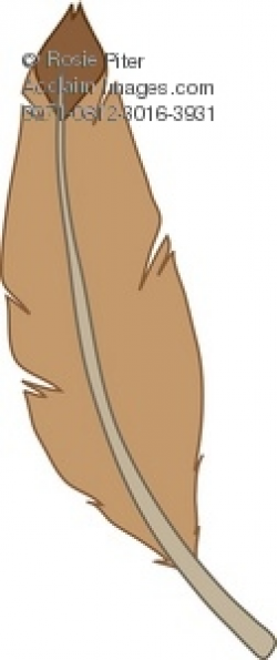 Royalty Free Clipart Illustration of a Brown Feather