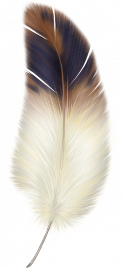 feather02.png | Feathers, Watercolor and Drawing projects